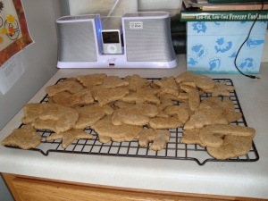Everybody needs a dock for their iPod! =D And cookies sitting in front of it!